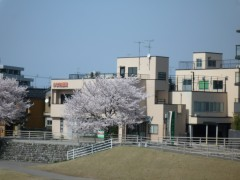 医院全景(さくら)